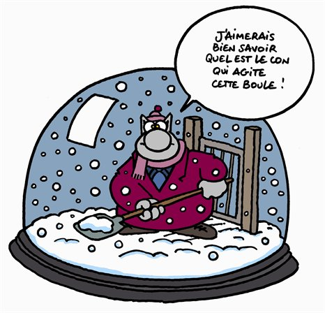 http://blog.i-g.ch/images/badinage/chat_neige.jpg